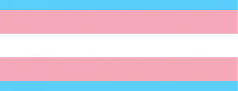 Transgender Awareness Week #TransWeek Image