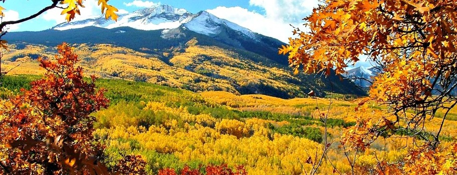 Fallorado: Leaf Peeping in the Rocky Mountain Empire Image