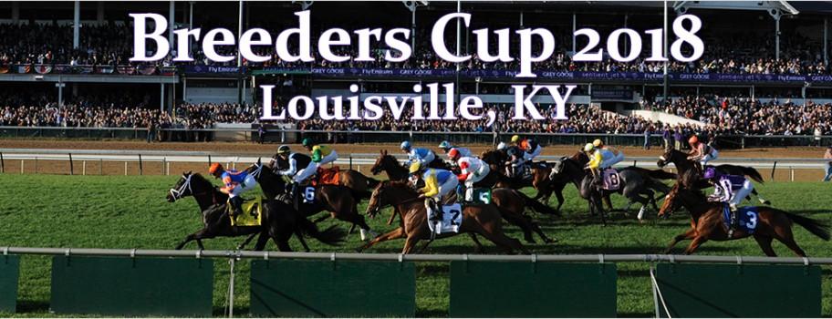 2018 Breeders' Cup Recap Image